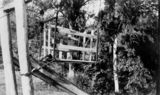 Picture relating to Canungra - titled 'Person carrier on the flying fox on the Canungra Pine Creek Tramway, ca. 1914'