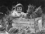 Picture relating to Queensland - titled 'Girl sitting in a crate of Queensland pineapples, 1924'
