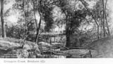 Picture relating to Enoggera - titled 'Bush scene of man standing on bank at Enoggera Creek'