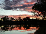 Picture of / about 'Murray River' New South Wales and Victoria - sunset on the murray.