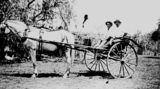 Picture relating to Chermside - titled 'Two men pose in a buggy at Chermside, Brsibane, ca. 1931'