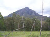 Picture relating to Mount Barney - titled 'Mount Barney'