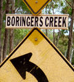 Picture relating to Black Mount - titled 'Boringer's Creek (near Black Mount, Pentland, Queensland)'