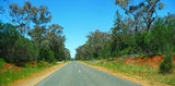 Picture relating to Parkes Eugowra Road - titled 'Parkes Eugowra Road'