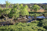 Picture relating to Tenterfield Creek - titled 'Tenterfield Creek'