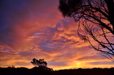Picture relating to Bay Of Fires - titled 'Bay Of Fires sunset'