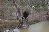 Picture relating to Mulligans Creek - titled ''