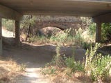 Avenel Under Hughes Creek Bridge remembering that once one could swim in it and even jump off the bridge, now it is all silted up and looking like its former self.