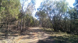 Picture relating to Ulandra Nature Reserve - titled 'Ulandra Nature Reserve'