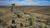 Picture of / about 'Mount Robert' South Australia - Mount Robert 3