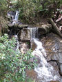 Picture of / about 'Olinda Creek' Victoria - Olinda Falls