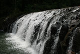 Picture of / about 'Malanda' Queensland - Malanda Falls