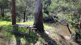 Picture relating to Tyers River - titled 'Wirilda camp grounds Tyres River '
