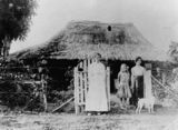 Picture relating to Cardwell - titled 'Grace Dallachy, and sisters Enid and Ivy Grey, posing in front of 'Yabbon', Cardwell, Queensland, ca. 1912'