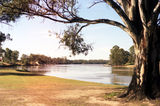 Picture relating to Mildura - titled 'Murray River at Mildura.'