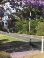 Picture of / about 'Eagle Heights' Queensland - Eagle Heights