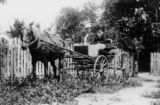 Picture relating to Ayr - titled 'Sarah Conley and her son Mr W. S. Conley seated in their buggy at Ayr, 1924'