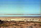 Picture relating to Lake Boga - titled 'Lake Boga'