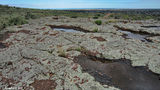 Picture of / about 'Mount Laura' South Australia - Rock pools