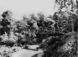 Picture relating to Indooroopilly - titled 'Footbridge over a creek at Indooroopilly, Brisbane, Queensland, 1876'